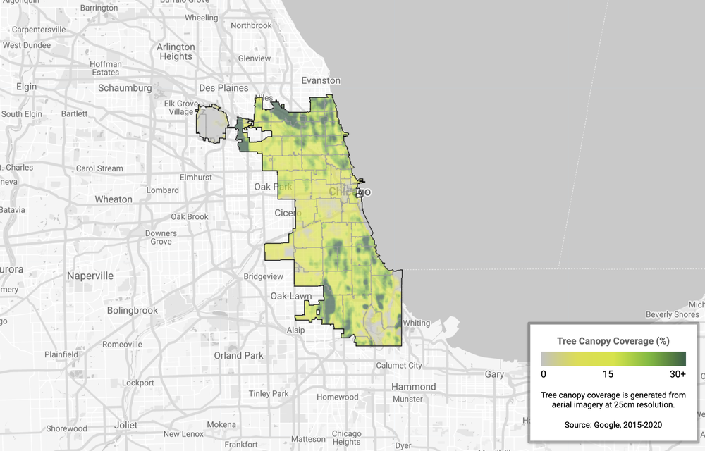 An image showing tree canopy coverage in Chicago