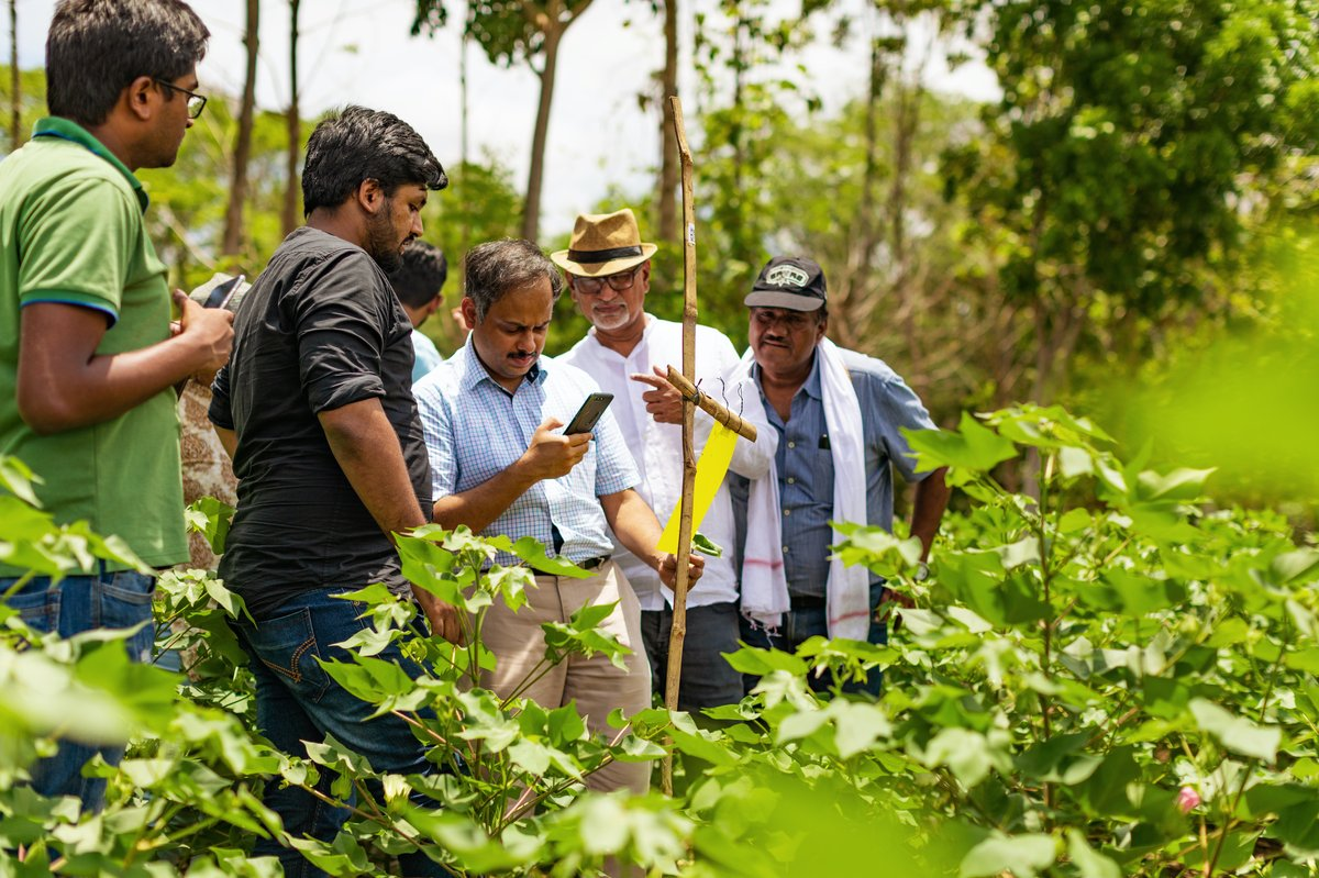 The Wadhwani Institute for Artificial Intelligence in India is working with local farmers to manage pest damage to crops