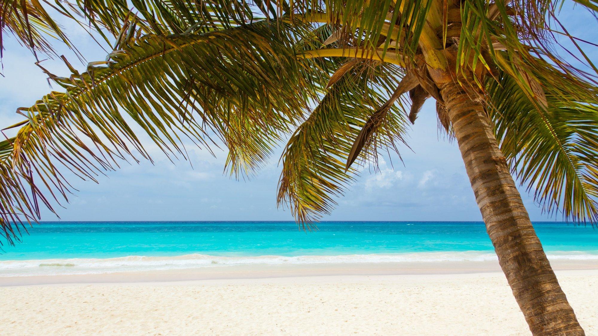BeachImage2