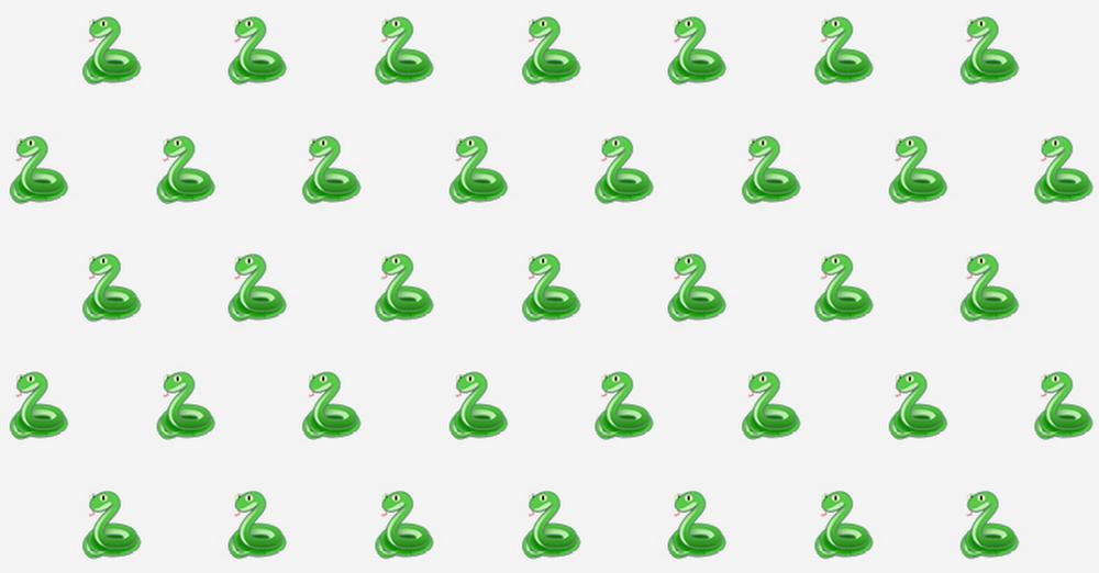 snake_blog.jpg