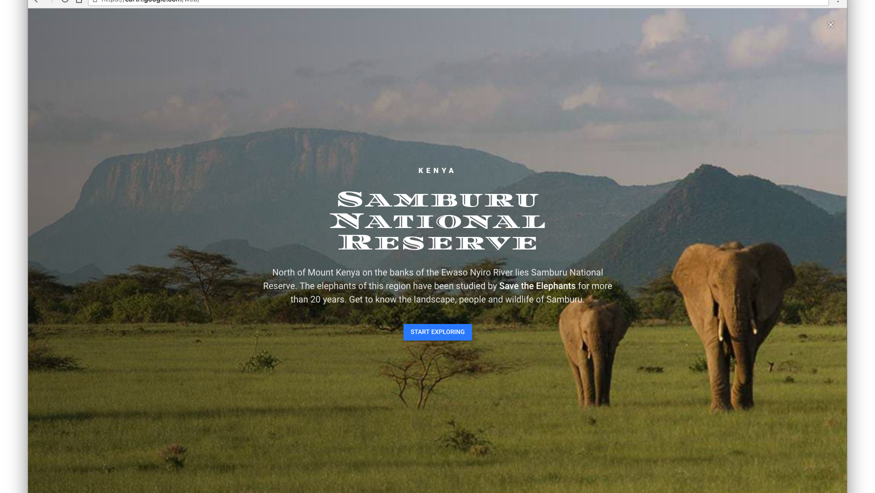 wildlife_samburu1.png