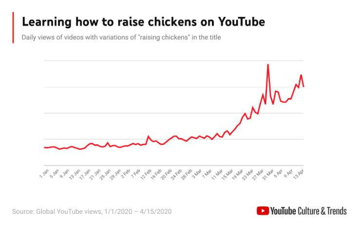 Learning how to raise chickens on YouTube - a graph