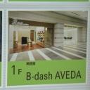 B-dash AVEDA