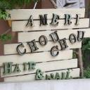 Ameri chou chou 柏  【アメリシュシュ カシワ】