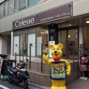 Celeste 高田馬場店【セレスト】