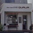 LIVE QUALIA