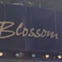 Blossom保谷 【ブロッサム】