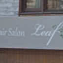 Hair Salon Leaf