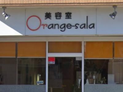 オレンジ サラ 河辺店