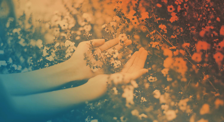 wholehearted-devotion