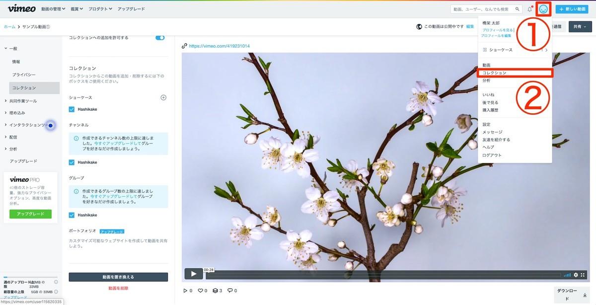 Vimeo(ビメオ)のコレクションにアクセス