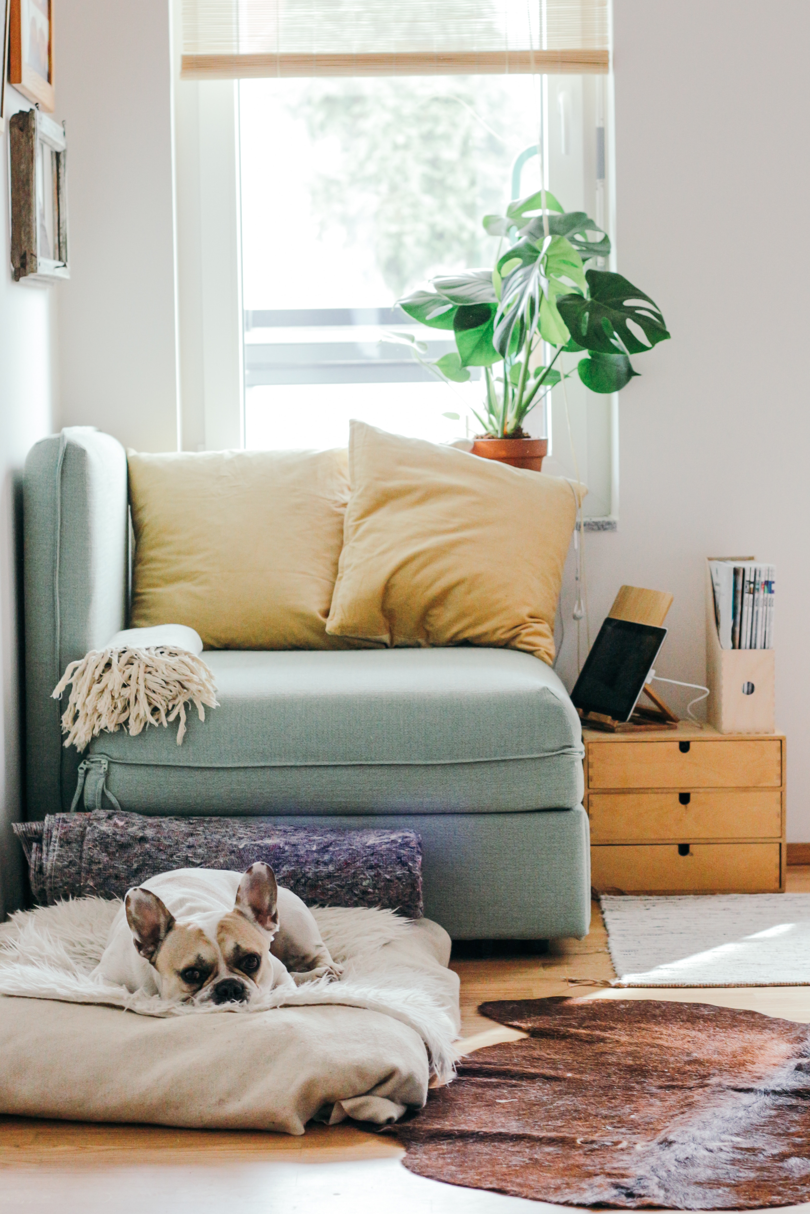 Cost of living can be a budgeting challenge. The rule of thumb is to spend less than 30 percent of your gross income on rent. This means you can afford other necessities, like utilities, groceries, and renters insurance.