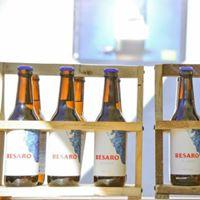 Imagen de la marca de cerveza Besaro