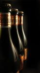 Imagen de la marca de cerveza Cerveseria Artesana Golding