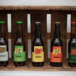 Imagen de la marca de cerveza Cerveses Ausesken