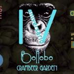 Imagen de la cervecería Bonobo Gastrobar