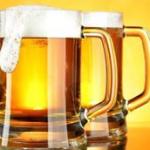 Imagen de la cervecería Cervecería Seny