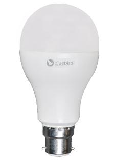Bluebird House Sparrow LED Bulb 23W (White, B22)