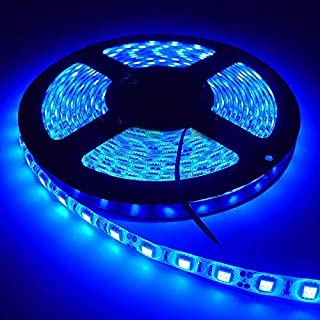 LED Strip Light  5050-60 LED Cove Light 5mtr roll (Blue, Pack of 1) 24W without driver