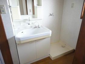 フラット'95 202号室の洗面所