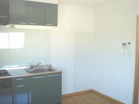 USマンション 201号室のキッチン