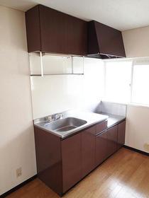 けやきハイツB棟 205号室のキッチン