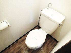 けやきハイツB棟 205号室のトイレ
