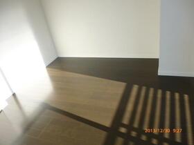 ラフィスタ横浜吉野町 204号室のその他