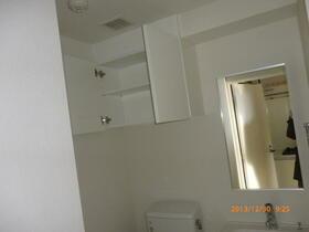 ラフィスタ横浜吉野町 204号室の洗面所