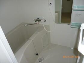 ラフィスタ横浜吉野町 204号室の風呂