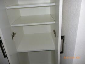 ラフィスタ横浜吉野町 204号室の収納
