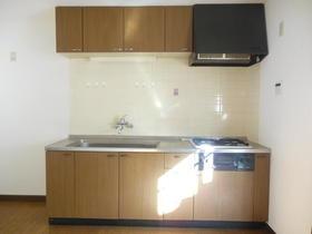 キャッスルハイツⅡ 103号室のキッチン