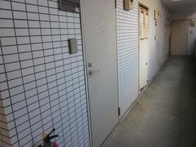 サダヤパレス 203号室の玄関