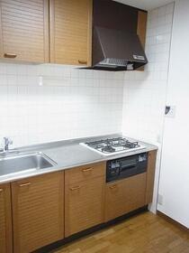 エスポワール与野Ⅱ 0501号室のキッチン