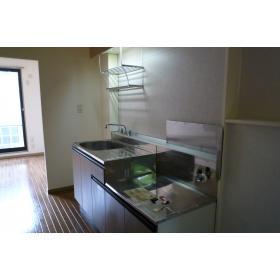 リバーハイツK 101号室のキッチン