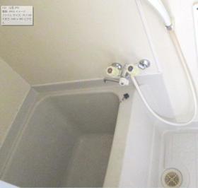 ハイムヤスイ一番館 102号室の風呂