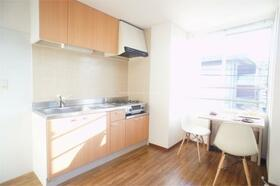 サンドゥエルCDEF棟 F202号室のキッチン