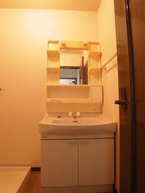成城グリーンテラス2番館 102号室の洗面所