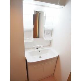 シティルミエール西浦和 303号室の洗面所