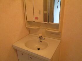 ベルハウス井野2 205号室の洗面所