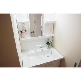 オルヒデアⅡ 203号室の洗面所