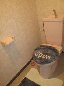 アスティーロイヤル 403号室のトイレ
