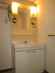 アスティーロイヤル 403号室の洗面所