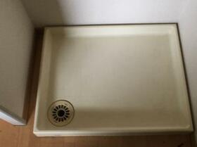ドリームハイツ澤 3号棟 303号室の洗面所