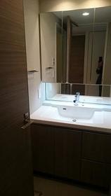 リビオ新宿ザ・レジデンス 304号室の洗面所
