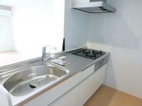 ロイヤルガーデン D 203号室のキッチン
