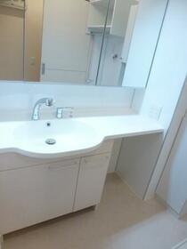 ロイヤルガーデン D 203号室の洗面所