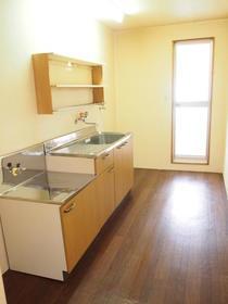 太陽ガーデン101棟 206号室のキッチン