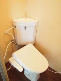 太陽ガーデン101棟 206号室のトイレ