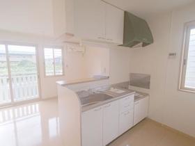 グリーン那須 A 102号室のキッチン